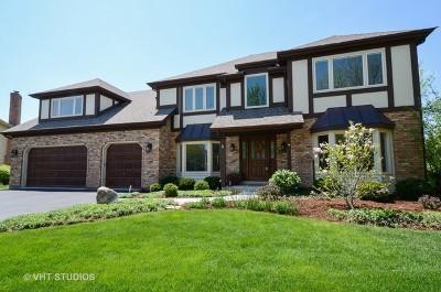 Wheaton Single Family Home For Sale: 203 Secretariat Court
