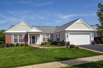 Huntley Single Family Home New: 12233 Arlington Drive