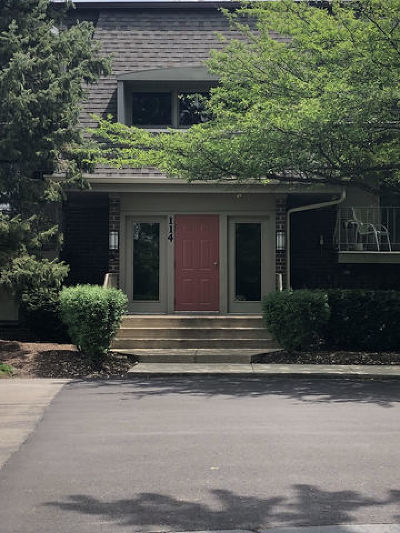 Naperville Condo/Townhouse New: 114 East Bailey Road #D