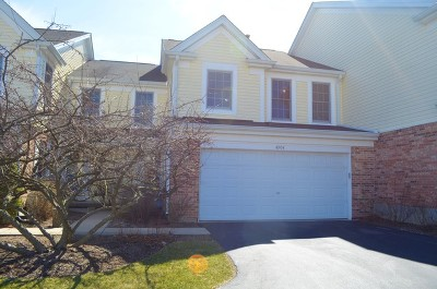 Hoffman Estates Condo/Townhouse For Sale: 4904 Turnberry Drive