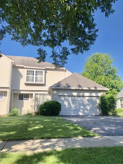 Bolingbrook Condo/Townhouse New: 229 Picardy Lane