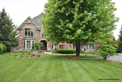 St. Charles Single Family Home New: 38w565 Forest Glen Court