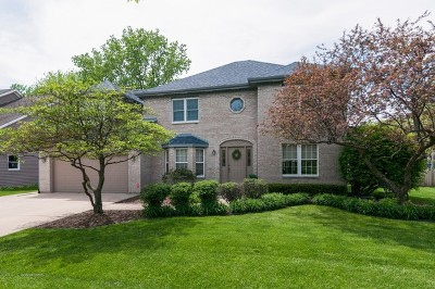 Glen Ellyn Single Family Home For Sale: 170 Macintosh Court