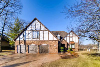 Bartlett IL Single Family Home New: $499,999