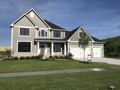 Naperville Single Family Home New: 4231 Chinaberry Lot 254 Lane