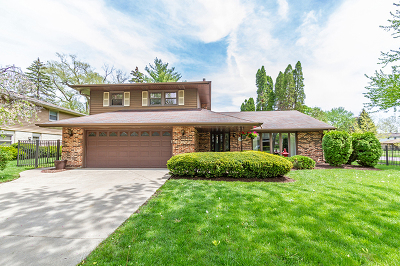 Mount Prospect Single Family Home For Sale: 1601 North Rosetree Lane