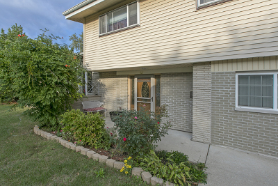 Glenview Single Family Home For Sale: 521 Michael Manor