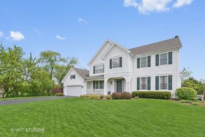Kane County Single Family Home New: 801 Wintercrag