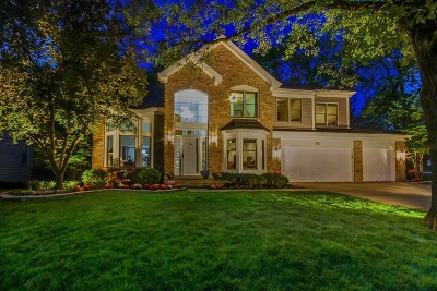 Schaumburg Single Family Home Contingent: 501 Rugby Place