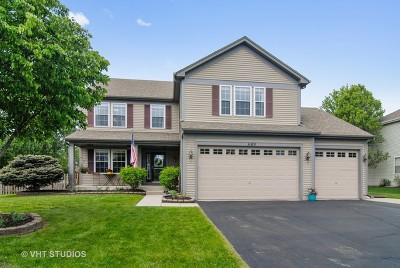 Elburn Single Family Home New: 1180 Wise Street