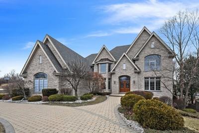 Burr Ridge Single Family Home New: 8525 Timber Ridge Drive
