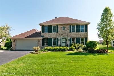 Bartlett IL Single Family Home New: $399,900