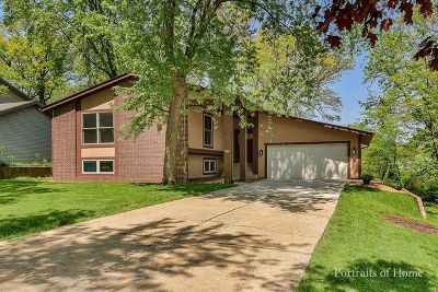Lisle Single Family Home For Sale: 1960 Green Trails Drive