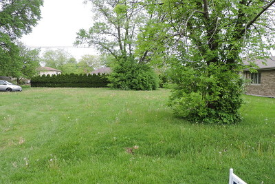 Tinley Park Residential Lots & Land For Sale: 17816 Ridgeland Avenue