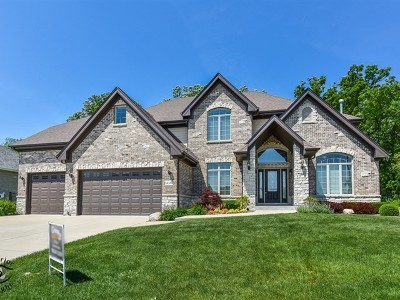 Orland Park Single Family Home For Sale: 14334 Fawn View Circle