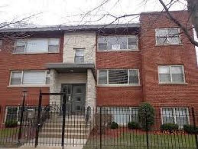 Chicago Condo/Townhouse New: 7501 North Damen Avenue #A1