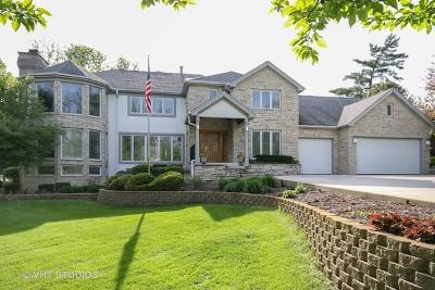 Palos Park Single Family Home For Sale: 12022 South 93rd Avenue