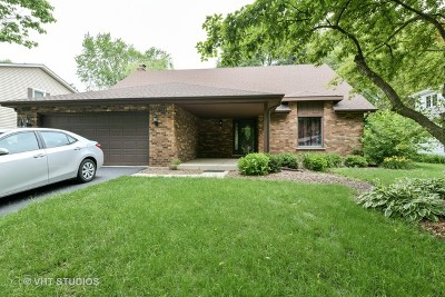 Naperville Single Family Home New: 817 Zaininger Avenue