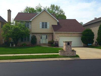 Bartlett IL Single Family Home New: $384,500