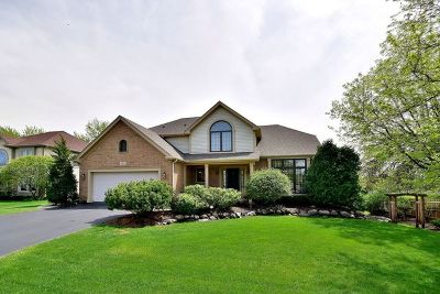 Lake Zurich Single Family Home For Sale: 467 Carolian Drive