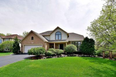 Lake Zurich Single Family Home For Sale: 467 Carolian Drive