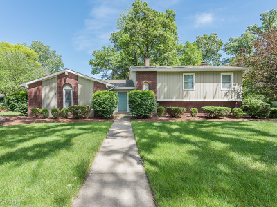 Downers Grove Single Family Home For Sale: 3549 Saratoga Avenue