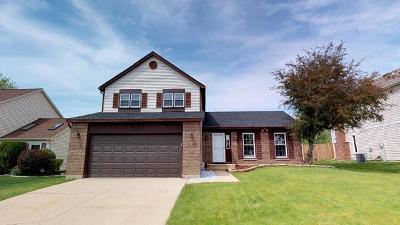 Hoffman Estates Single Family Home New: 1400 Candlewood Lane