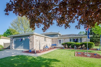 South Elgin Single Family Home New: 919 Sundown Road