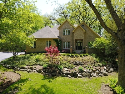 St. Charles Single Family Home New: 41w877 Hunters Ridge