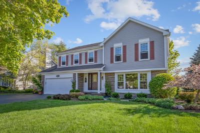 Hoffman Estates Single Family Home New: 5040 Thornbark Drive