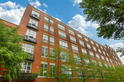 Chicago Condo/Townhouse New: 1735 North Paulina Street #309
