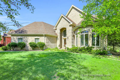Homer Glen Single Family Home New: 16229 Wildwood Lane