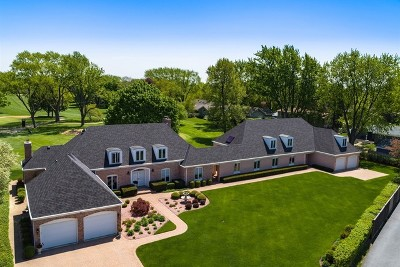 McHenry Single Family Home For Sale: 312 North Shepherd Hill Lane