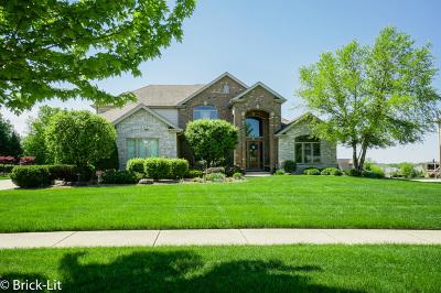 Mokena Single Family Home New: 12331 Foxborough Drive
