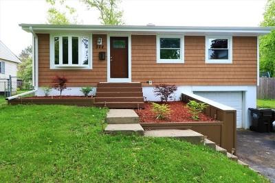 Mc Henry County Single Family Home New: 328 Ridge Avenue