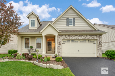 Oswego Single Family Home For Sale: 698 Cheshire Court