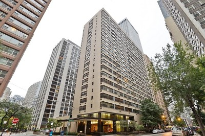 Chicago Condo/Townhouse New: 850 North Dewitt Place #22AC