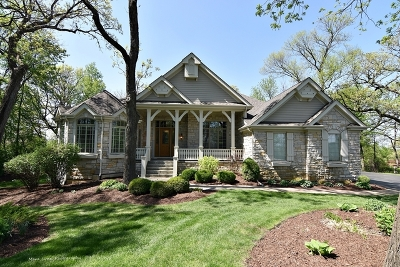 St. Charles Single Family Home New: 38w380 Heritage Oaks Drive