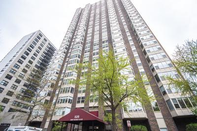Chicago IL Condo/Townhouse New: $249,500