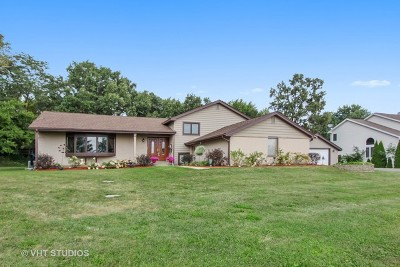 Lake Zurich Single Family Home New: 1230 Honey Lake Road
