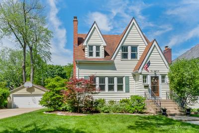 Glen Ellyn Single Family Home New: 250 Van Damin Avenue