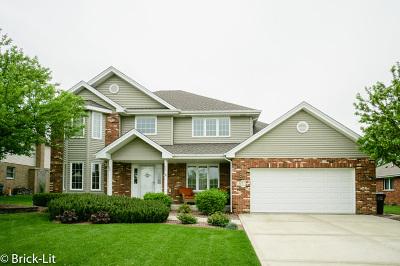 New Lenox Single Family Home New: 817 Belot Lane