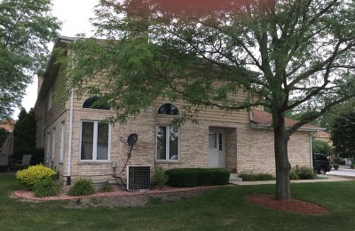 Tinley Park Condo/Townhouse New: 7111 182nd Street