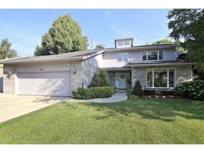 Wheeling Single Family Home New: 804 Tanglewood Drive