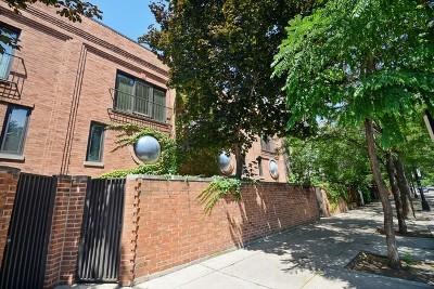 Chicago IL Condo/Townhouse New: $1,200,000
