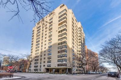 Chicago IL Condo/Townhouse New: $524,900