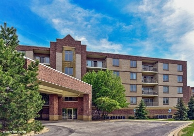 Elmhurst Condo/Townhouse For Sale: 201 Brush Hill Road #106