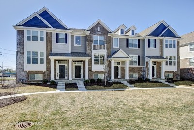 Naperville Condo/Townhouse New: 1413 North Charles Avenue