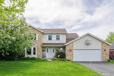 Mc Henry County Single Family Home New: 1254 Tara Drive