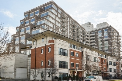 Chicago Condo/Townhouse New: 1515 South Prairie Avenue #914
